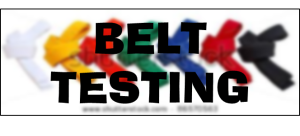 belt-testing-website-pic